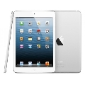 ПланшетыApple iPad mini Wi-Fi 16 GB White